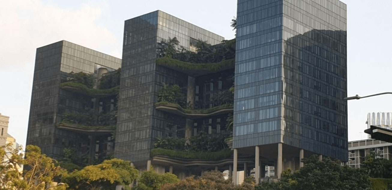 Vertical planting in Singapore